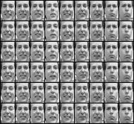 freyface